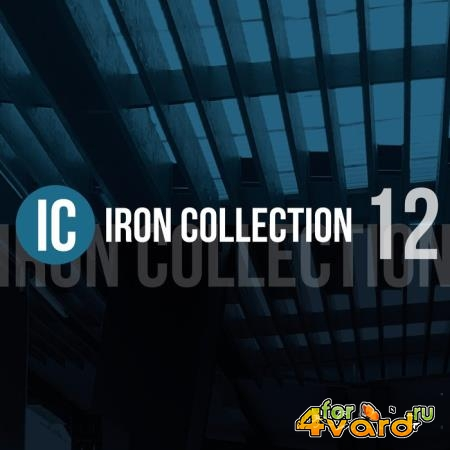 Iron Collection, Vol. 12 (2019)