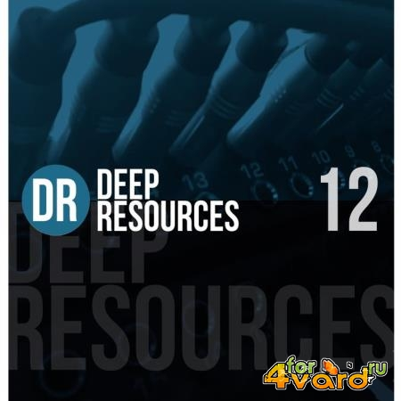 Deep Resources, Vol. 12 (2020)